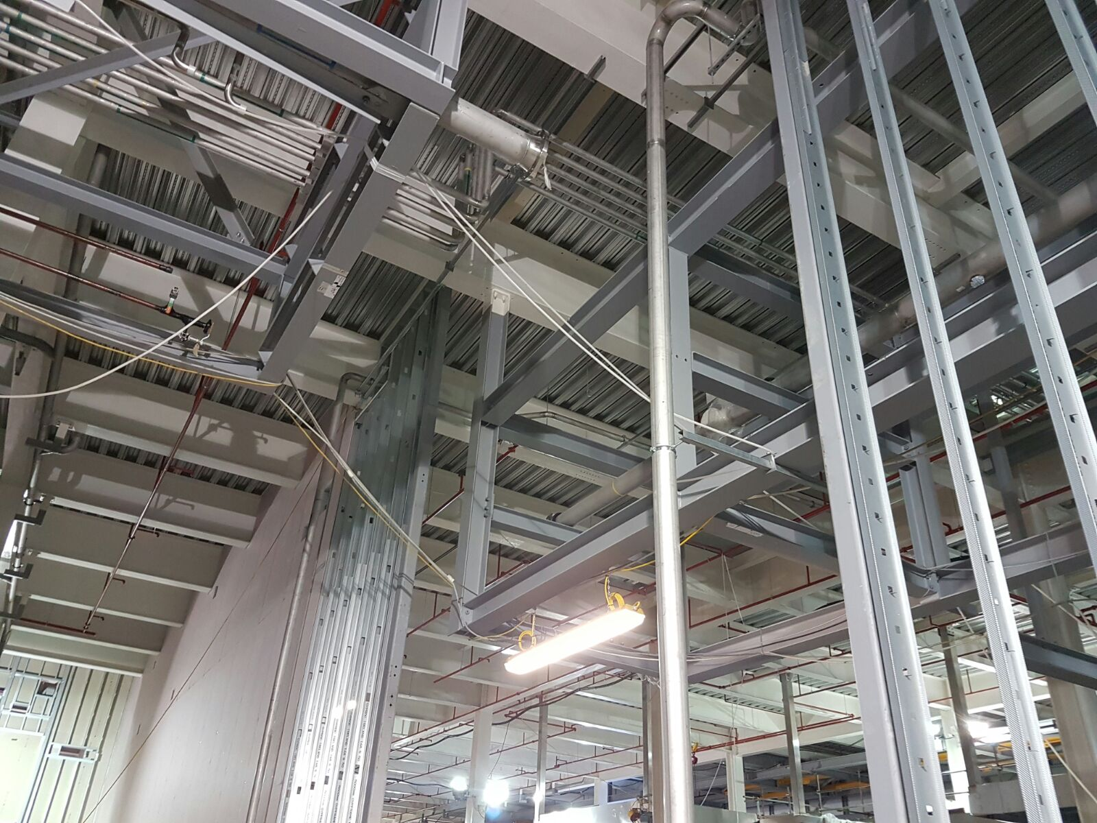 Pharma Structural Steel Work